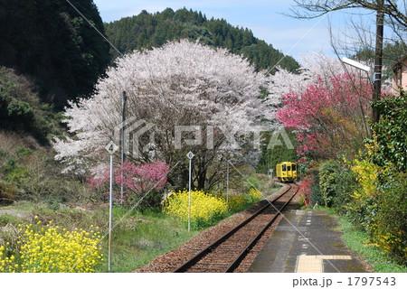 豊後中川駅 交通 田舎 鉄道の写...