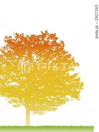 影絵 木 紅葉