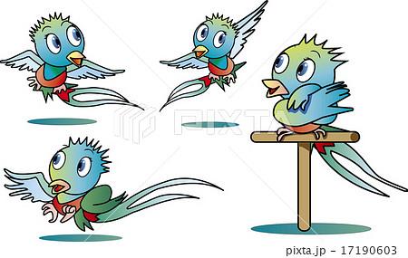 ケツァールの鳥のイラスト素材 , PIXTA