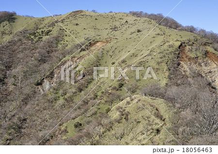 箒杉沢ノ頭の写真素材 - PIXTA