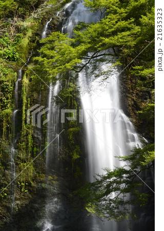 箕面の滝の写真素材 - PIXTA