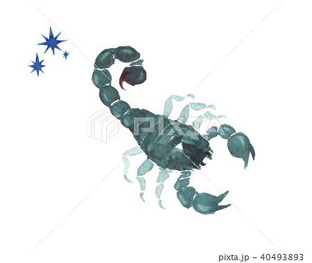 水彩画 さそり サソリ 蠍のイラスト素材