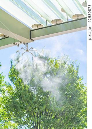霧散布の写真素材 - PIXTA