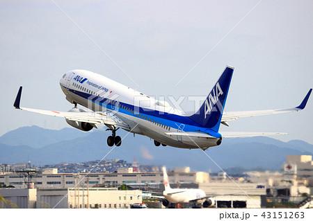 Ana 飛行機の写真素材